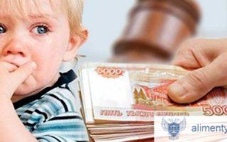 Как оформить алименты от государства, если отец не платит