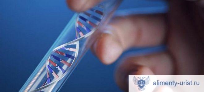 Сколько стоит генетическая экспертиза на установление отцовства